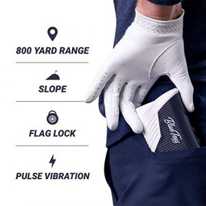 Blue Tees Golf Series 2 Pro features