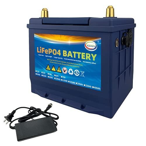 12V 60Ah Lifepo4 Lithium Iron Battery Deep Cycle